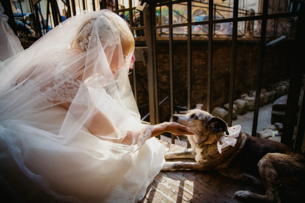 bride greeting her dog just before entering the church for the ceremony