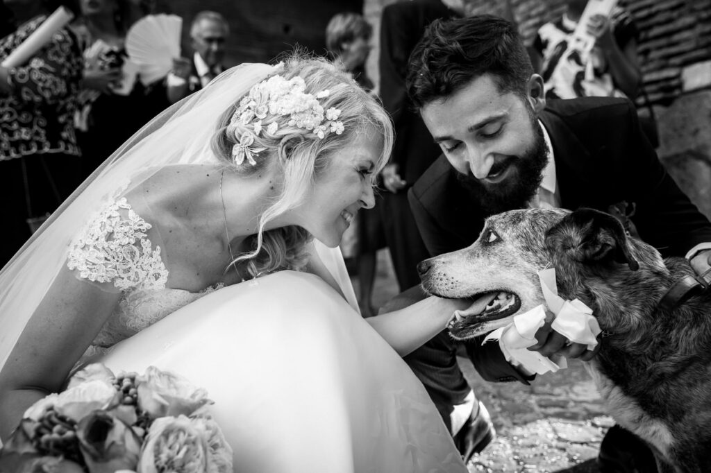 bride and groom greeting their dog after the ceremony